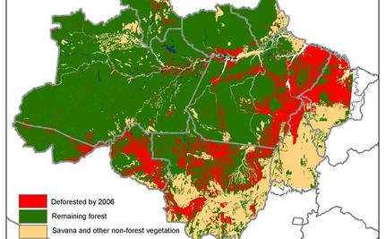 Uncertain Future For Brazilian Forests