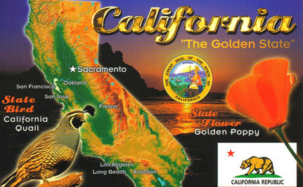 """Election Update: California Says """"Yes"""" To Term Limits And """"No"""" To Cigarette Tax"""