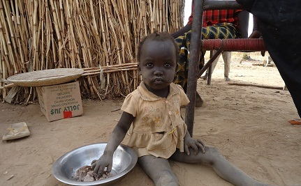 Food Insecurity Casts Shadow over South Sudan's First Birthday
