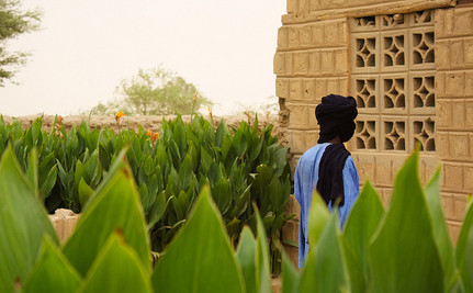 100 Sharia Lashes for Unwed Parents in Mali