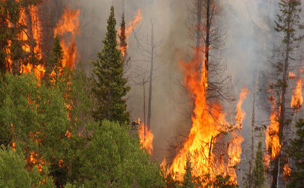 Are We To Blame For The Colorado Wildfire?