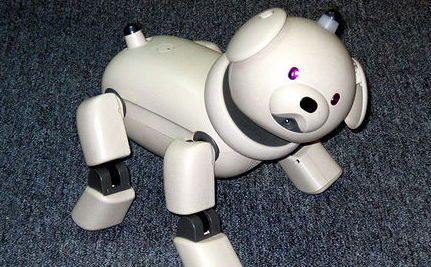 3 Robots That Can Manage Natural Disasters