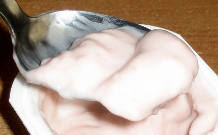 4 Reasons Why Yogurt Is Pudding (Slideshow)