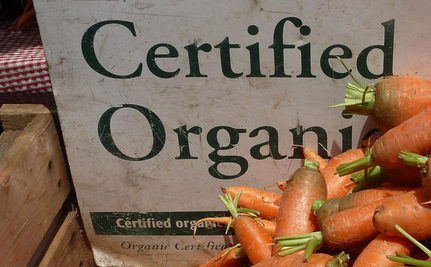 What's Big Food Doing in the Organic Business?