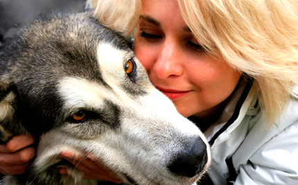 World Stands Still As Dog Reunites With Mom After 3.5 Years