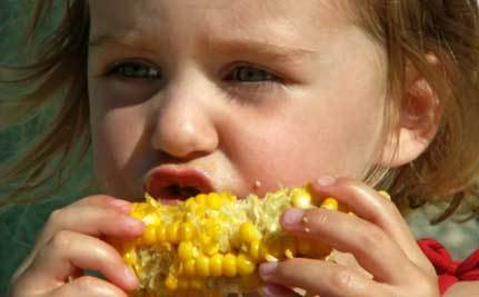Fattening Our Kids on GMO Foods