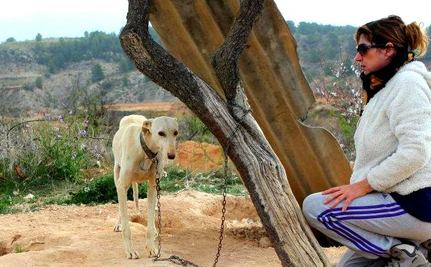 Chained in the Middle of Nowhere, 120 Dogs Rescued