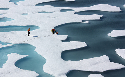 No Sea Ice in the Arctic in a Decade, Scientists Warn