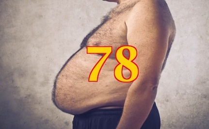 Which State Is The Fattest Of Them All?
