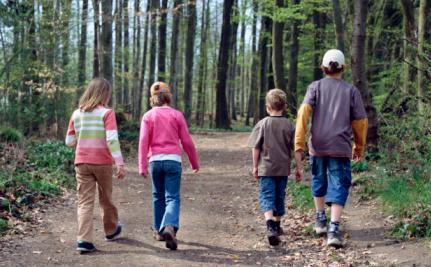 Top 4 U.S. Spots For A Nature Walk