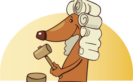 A New Super-Breed of Animal Lawyers