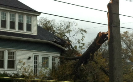 Superstorm Sandy Leaves a Path of Devastation (and a Surprise)