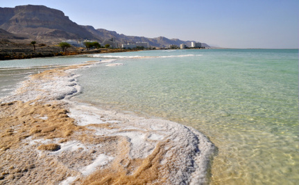 What is Killing the Dead Sea?