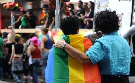 Gay Marriage Will Make France 'A Land of Homos,' Says Senator