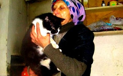 Remarkable Rescue of Elderly Woman Living at Dump With Dogs & Cats