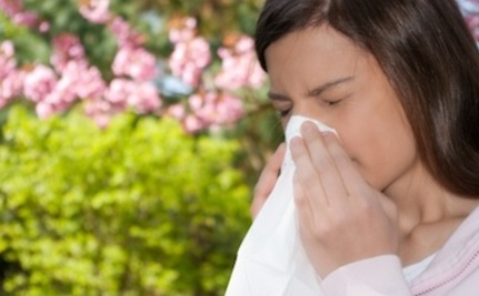 How Global Warming May Affect Your Allergies