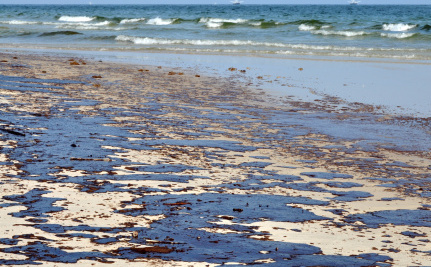 BP to Plead Guilty, Accept Criminal Charges for Gulf Oil Spill