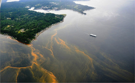 Washington State Declares War on Ocean Acidification