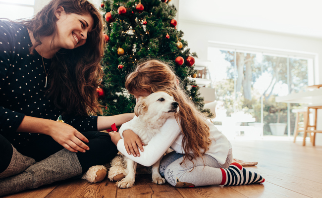 5 Reasons Not to Buy a Puppy for Christmas