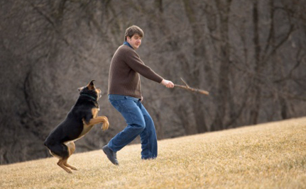 Wrestle or Fetch: Scientists Wants to Know How You Play with Your Dog