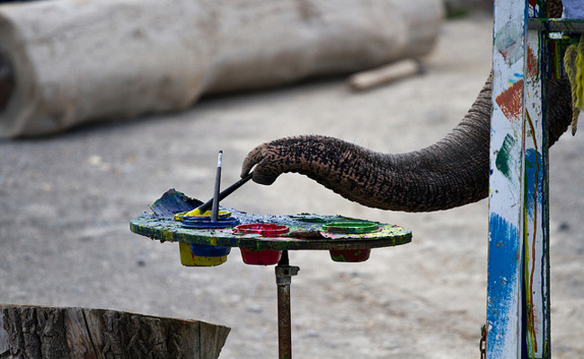 5 Animals Who Make Art