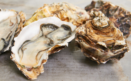 Oysters Killed by Climate Change's Evil Twin