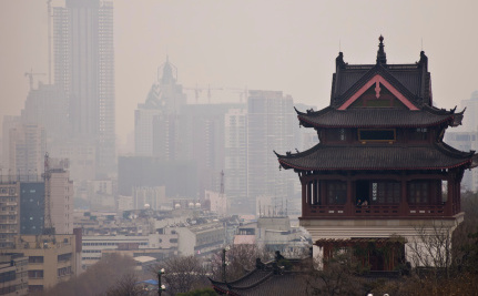 China's Air Pollution Attacking Plants As Well As People