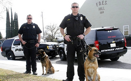 Drug Dogs At Traffic Stops? SCOTUS Says Go For It!