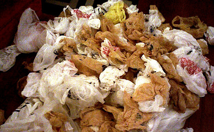 Germ-Ridden Consequences of Plastic Bag Bans