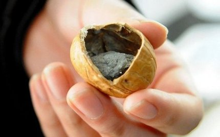 Fake Concrete-filled Walnuts Being Sold in China