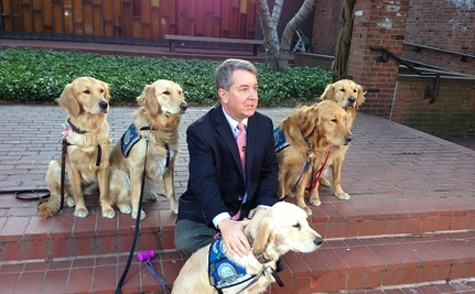 Comfort Dogs Help Boston Recover