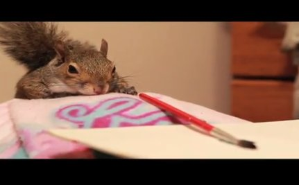 Daily Cute: Winkelhimer the Disabled Painting Squirrel