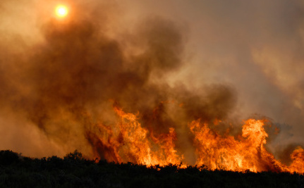 Prevent Wildfires With These 5 Important Tips