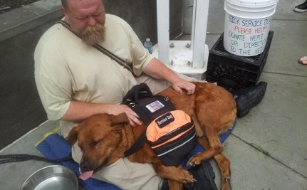 2 Homeless Men Go to Great Lengths for Their Beloved Dogs