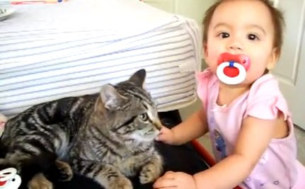 Daily Cute: Calm Cat Refuses to Acknowledge Baby