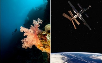 Which is More Important, Space Exploration or Ocean Discovery?