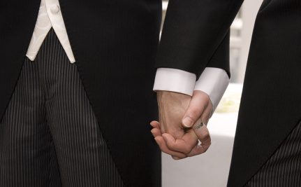 Post Prop 8, Are All Gay Marriage Bans Unconstitutional?