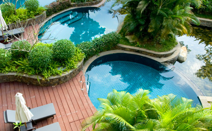 4 Eco-Friendly Pools Worthy Of Your Backyard