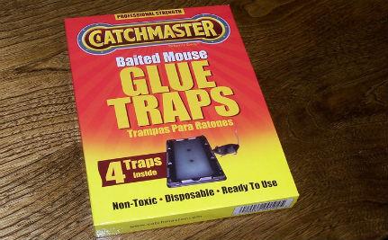 7 Humane Alternatives to Glue Traps