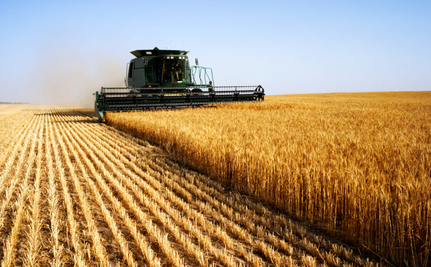 Farming Subsidies Designed To Make Your Health Suffer