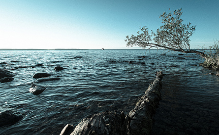 Destroying Nature: Oil Spills That Can't Be Turned Off