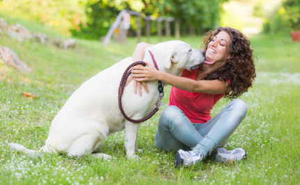 Protecting Your Pet From Domestic Violence Could Help You Protect Yourself