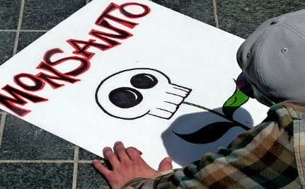 Senate Decides to Let Monsanto Protection Act Die