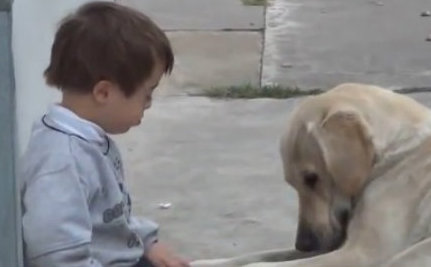 Two Dogs, Two Special Needs Kids and Two Happy End