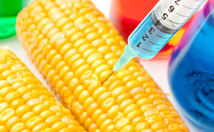 What Really Happened to GMO Labeling in Washington