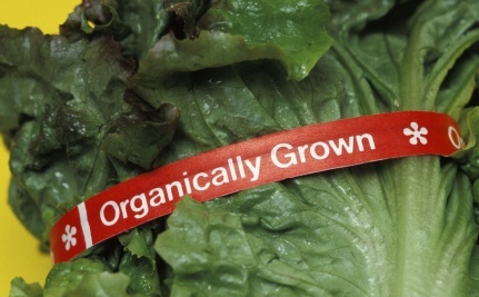 Does Organic Food Really Taste Better?