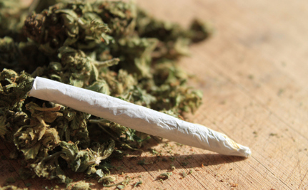"""Colorado Pot Stores Will Soon Get a Little Help From Their Friends at """"High Times"""""""