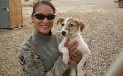 Soldiers and Their Strays: How Volunteers Reunite Them Forever