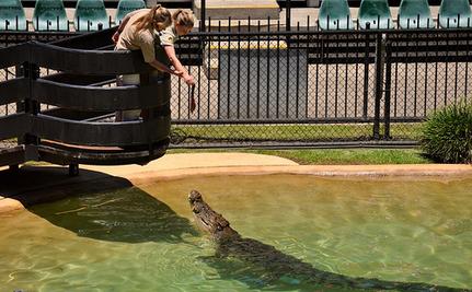 Bindi Irwin: Wildlife Warrior or SeaWorld Scapegoat?