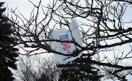 NYC and Dallas Consider Plastic Bag Fees, but Do They Work?